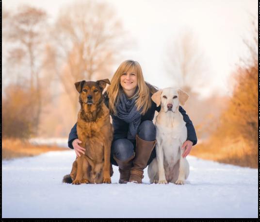 Bild Julia mit Hunden